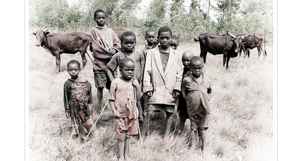 Hirten, Burundi III