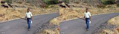 Hirtenstab genannt Garrote - La Gomera