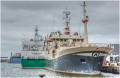 Hirtshals im Hafen