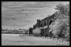 Historische Eisenbahnbrücke Wesel -6-