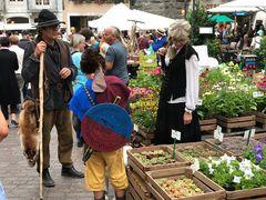 Historischer Markt in Solothurn
