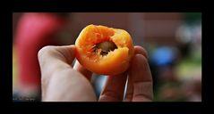 Hmmm.... fruit.