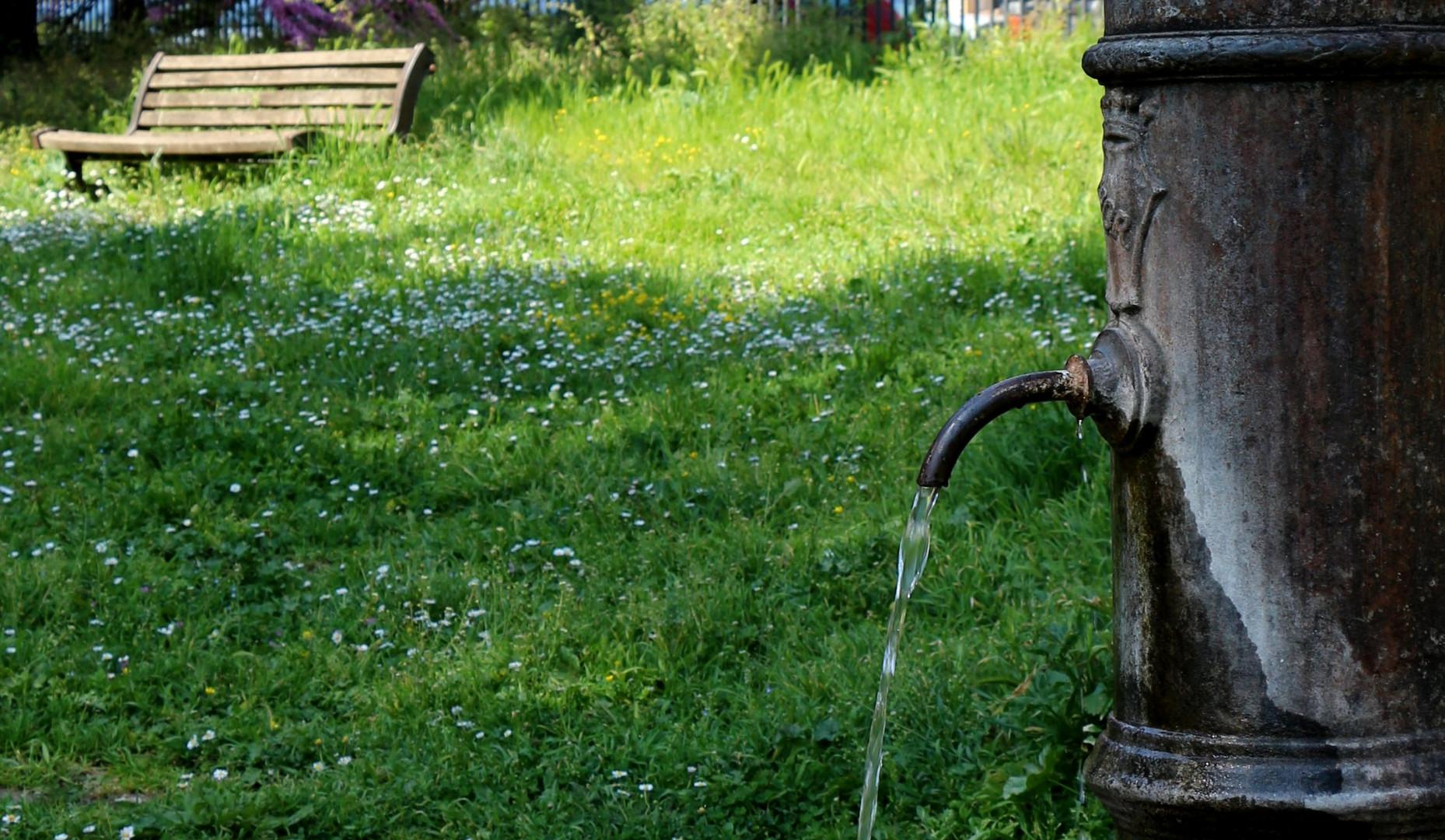 Ho il sole, ho l'acqua, ho l'aria e il prato fiorito...