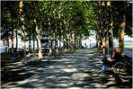 Hoboken Summer No. 1 - A Sun-Dappled Walk in Pier A Park