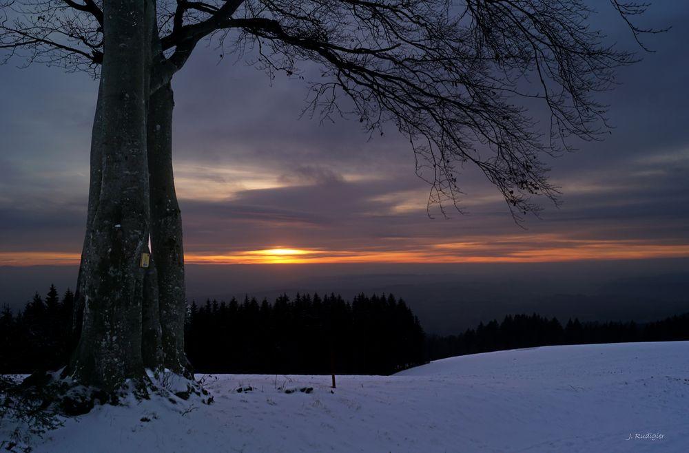 Hoch oben bei Hornberg
