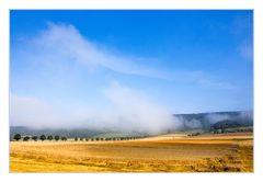 Hoch- Sommer- Hoch- Nebel