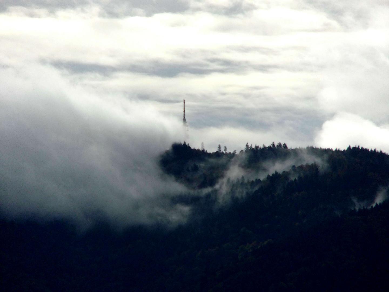 Hochblauen/Südschwarzwald im Morgennebel