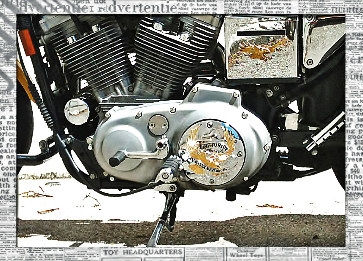 Hochglanz - Harley