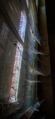 Hochhaus - für Spinnen ;-)