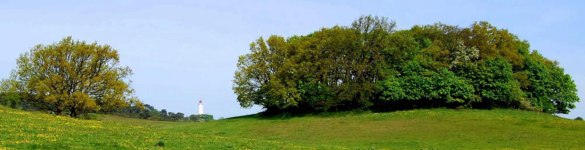 Hochland ( Insel Hiddensee )