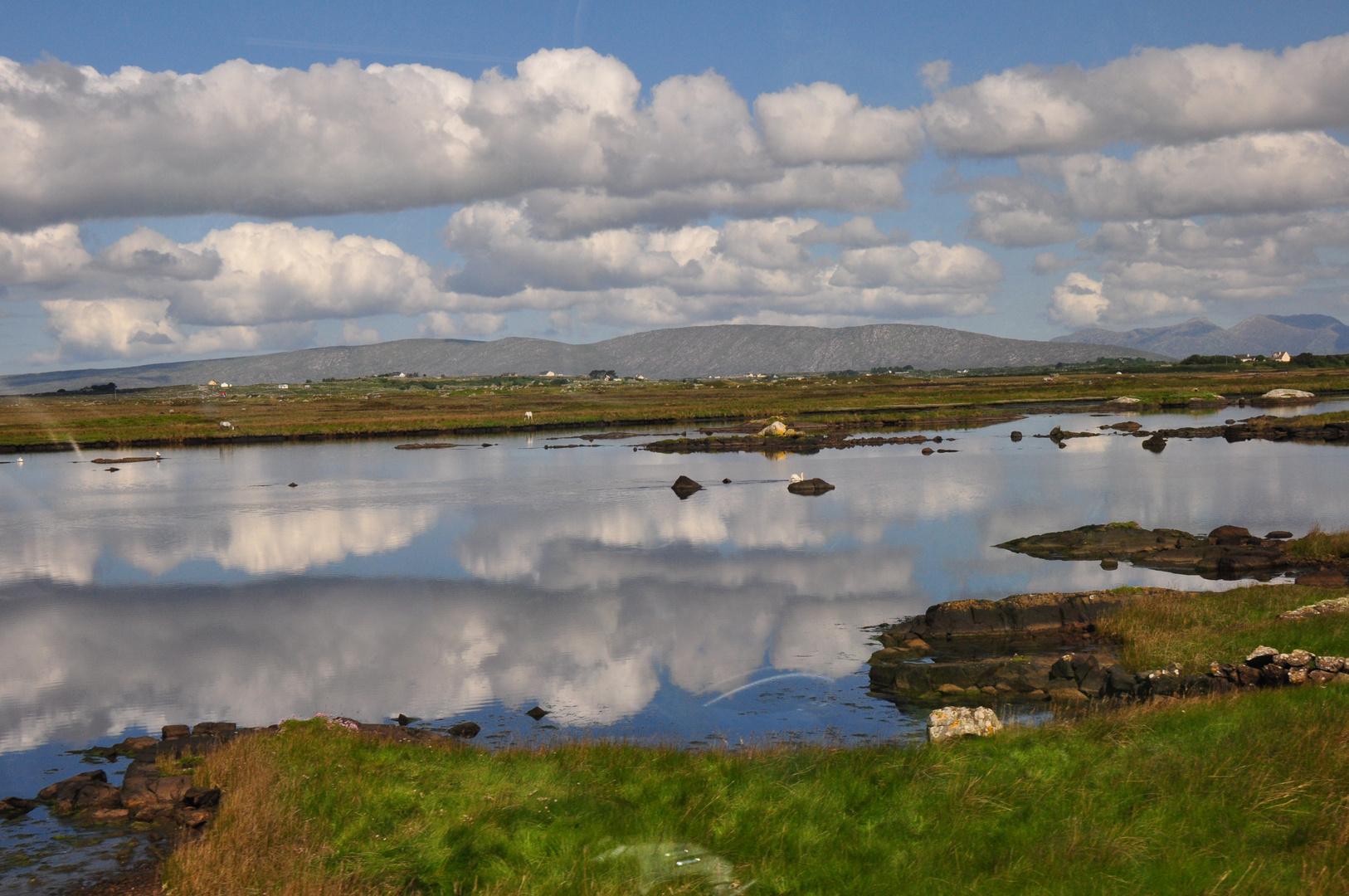 Hochmoor in Irland