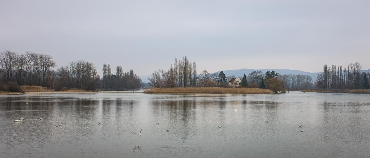 Hochnebel-Idylle
