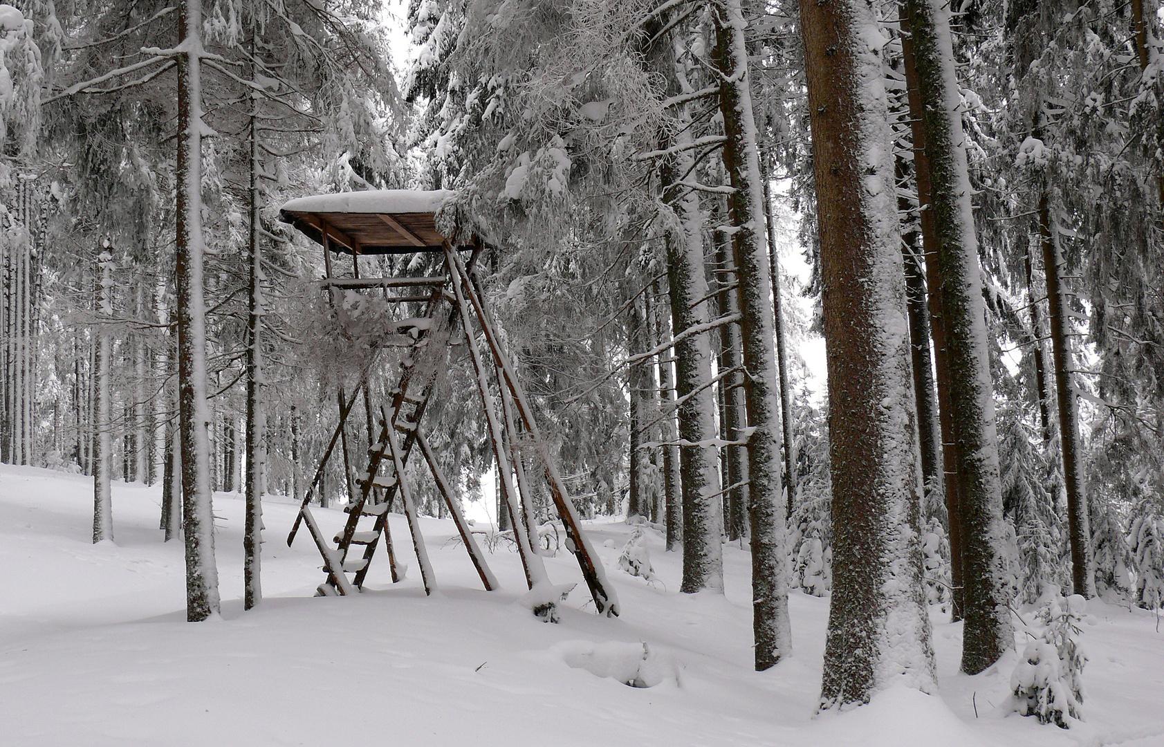 """""""Hochsitz im Winter"""""""