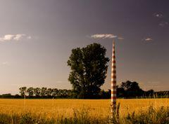Hochsommer am Niederrhein