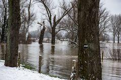 Hochwasser                  ..120_4426