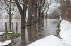 Hochwasser.      ..120_4428
