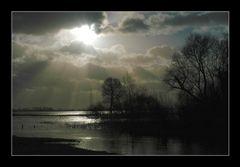 Hochwasser (15)