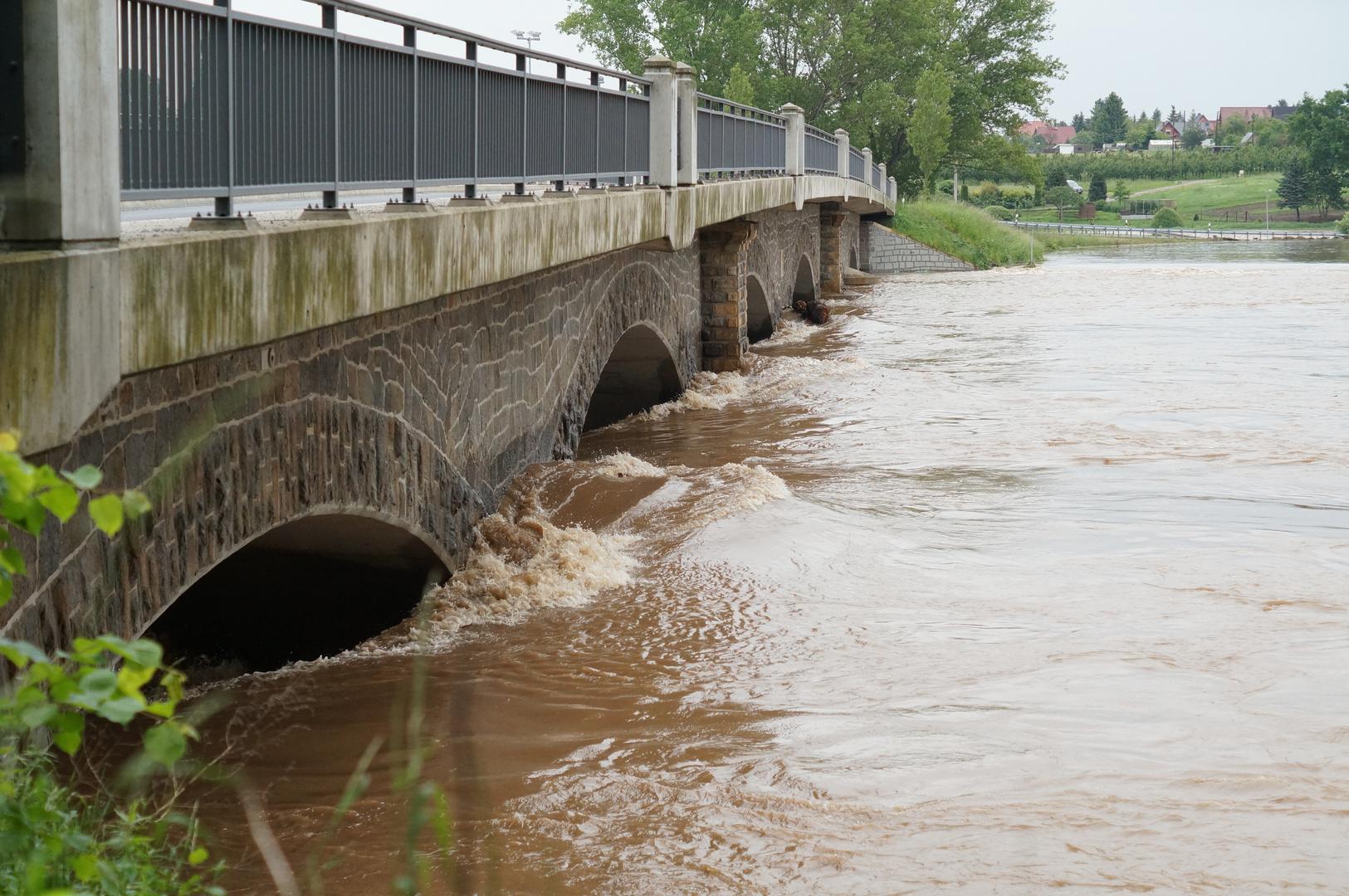 Hochwasser 2013 - die Mulde bei Kössern (Grimma) 03.06.2013