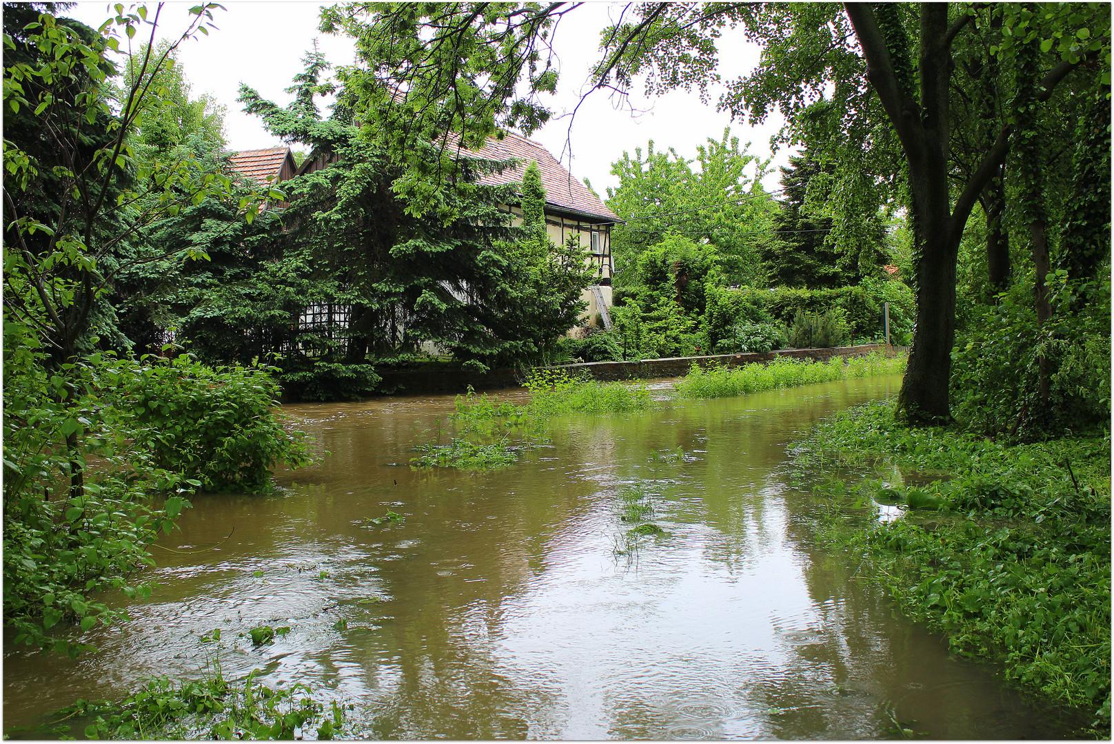 Hochwasser am 03.06.2013