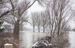 Hochwasser am 09.02.2021 ..120_4437