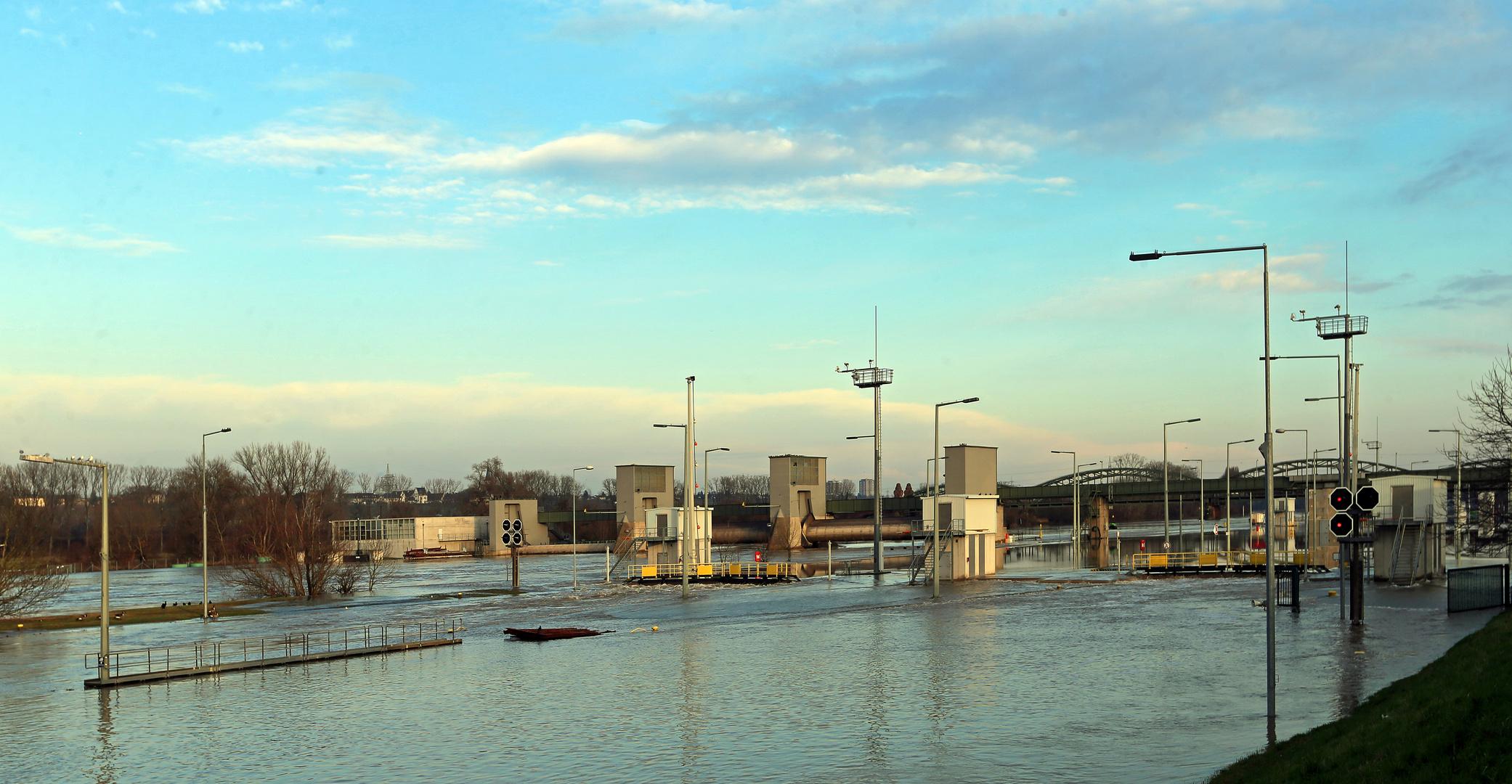 Hochwasser am Main -Schleuse Kostheim-