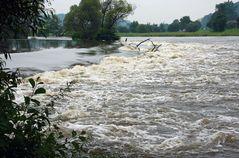 Hochwasser am Regen - 2 -