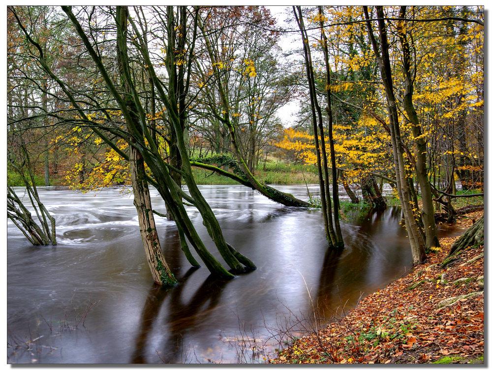 Hochwasser an der Alster