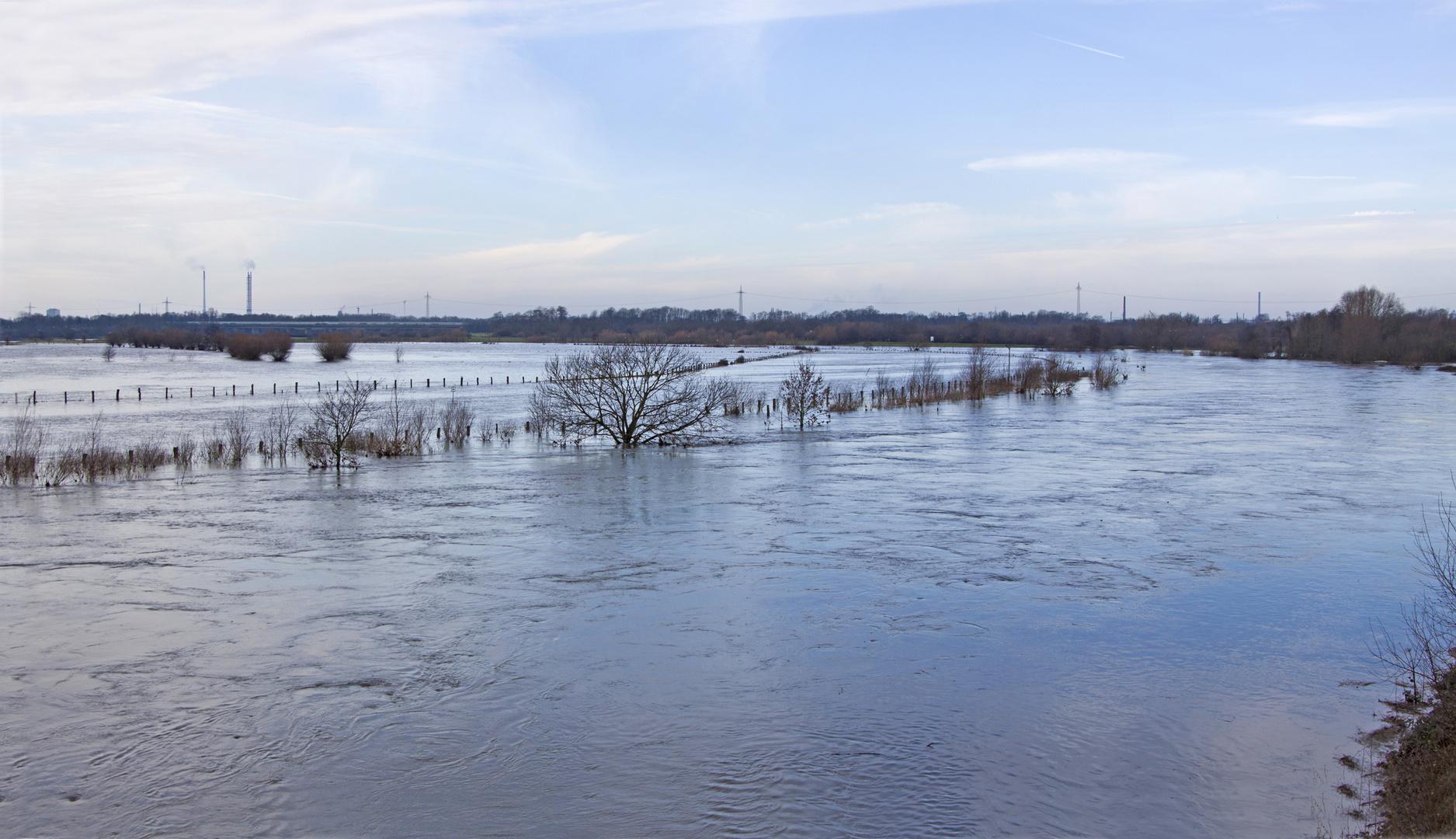 Hochwasser an der alten Ruhr...