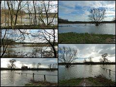 Hochwasser an der Lippe in Eversum