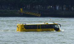 Hochwasser auch in Rotterdam?