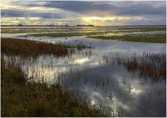 Hochwasser auf Kirr (Handyknips)