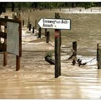 Hochwasser Im Ennstal II