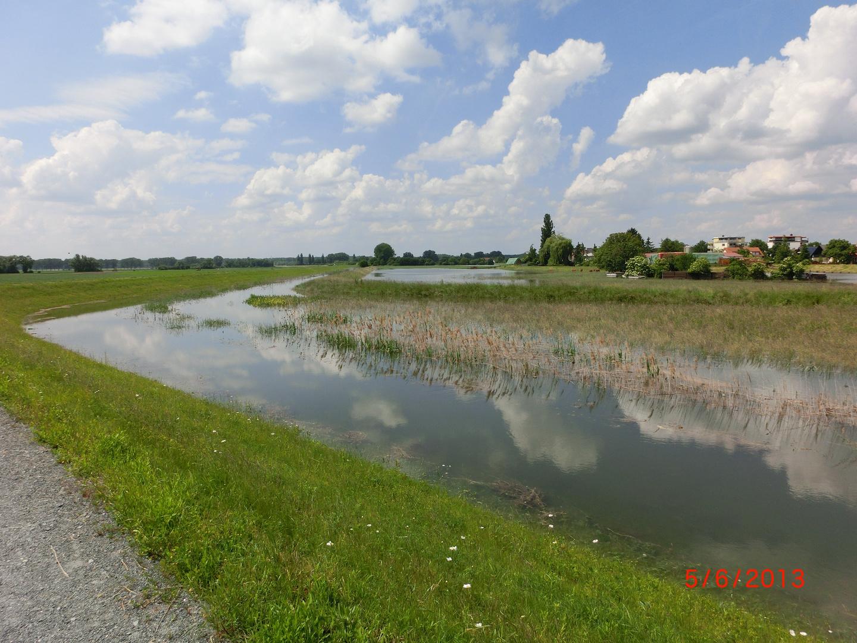 Hochwasser im Juni 2013 bei Stockstadt