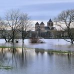Hochwasser im rechtsrheinischen Rheinpark 4