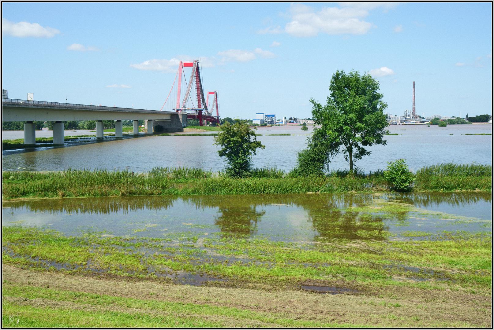 Hochwasser im Rhein bei Emmerich