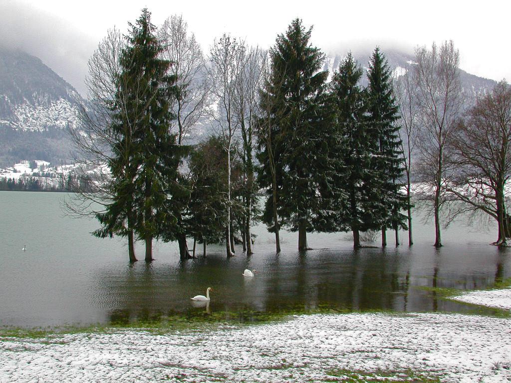 Hochwasser im Spätwinter am Wolfgangsee