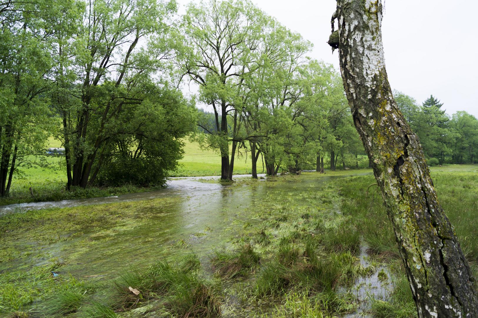 Hochwasser im Vogtland - Aufnahme vom 04.06.2013