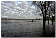 Hochwasser in Düsseldorf