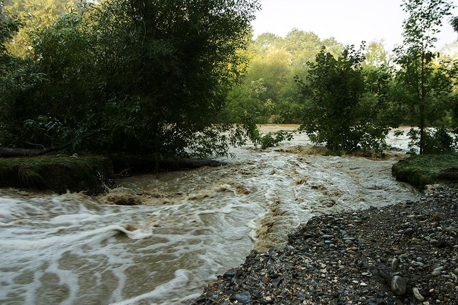 hochwasser: nearly@home