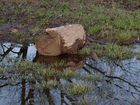 Hochwasser Part One