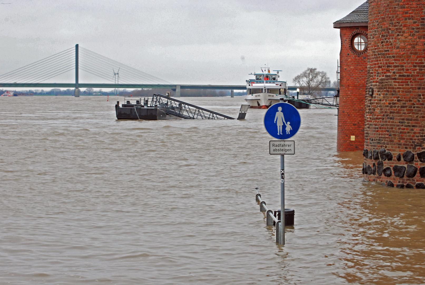 Hochwasser Rees am Rhein 01