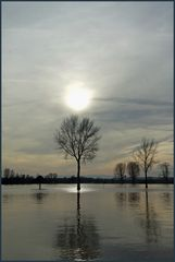 Hochwasser Romantik