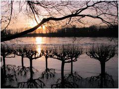 Hochwasser-Romantik