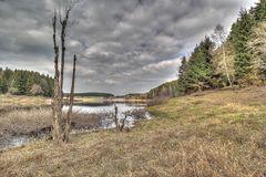 Hochwasser-Schutzbecken Mandelholz im Harz
