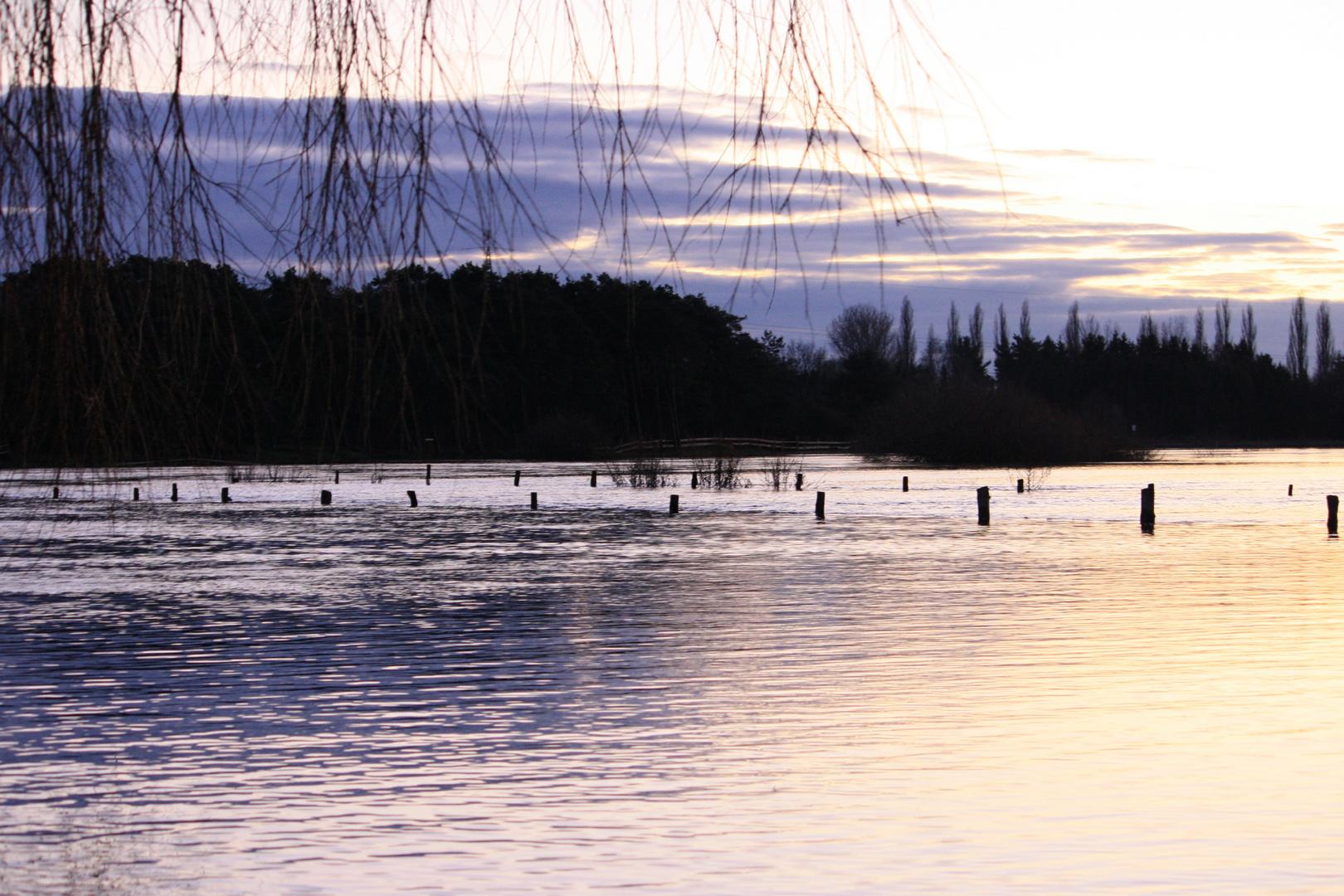 Hochwasser Winsen/Aller