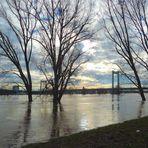 Hochwasserstimmung ...