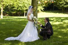 .-= Hochzeit  =-..
