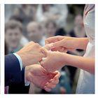 Hochzeit Collage I