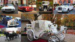 Hochzeitfahrzeuge auf der Insel Mainau