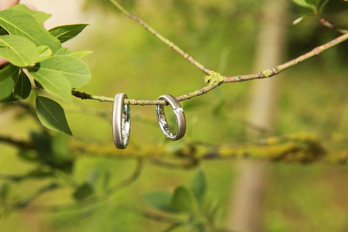 Hochzeitsringe Foto Bild Natur Kreativ Aufnahmetechniken Ringe
